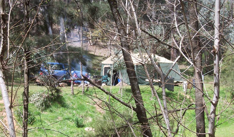 Abercrombie Caves campground - Tourism Gold Coast