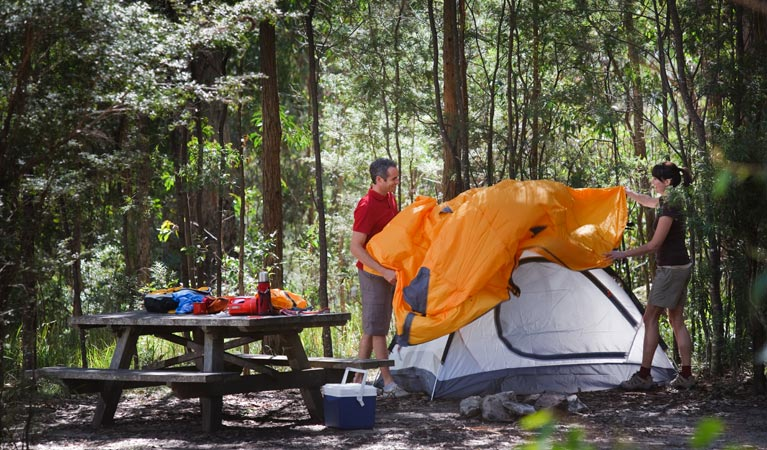 Bald Rock campground and picnic area - Tourism Gold Coast
