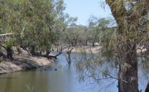 Beds on the Barwon - Tourism Gold Coast