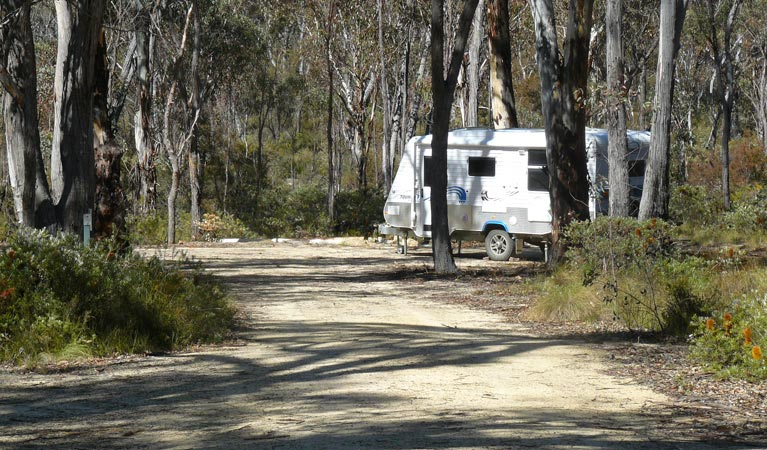 Blatherarm campground and picnic area - Tourism Gold Coast