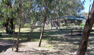 Coach and Horses campground - Tourism Gold Coast