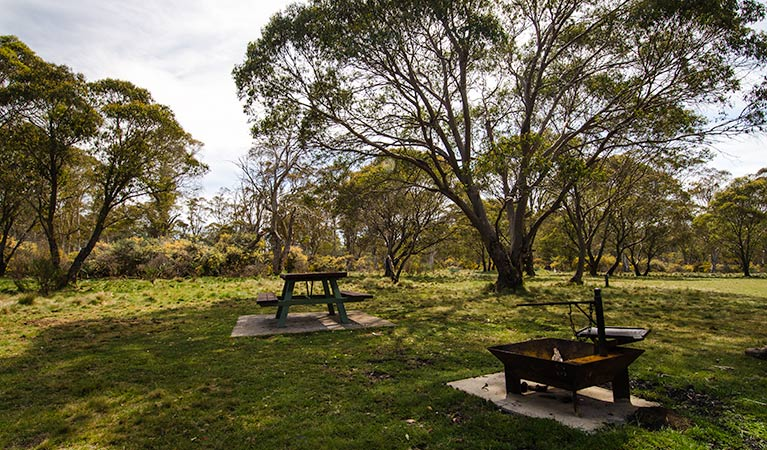 Little Murray campground - Tourism Gold Coast