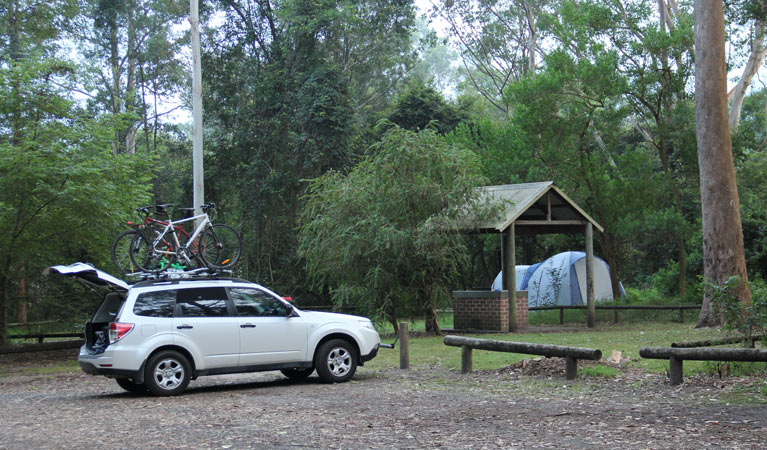 Mill Creek campground - Tourism Gold Coast