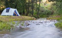 Nymboida Camping  Canoeing - Tourism Gold Coast