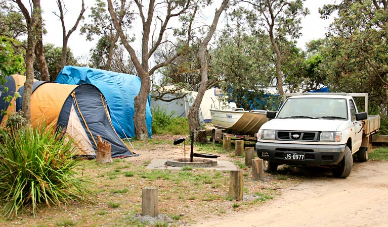 Picnic Point campground - Tourism Gold Coast