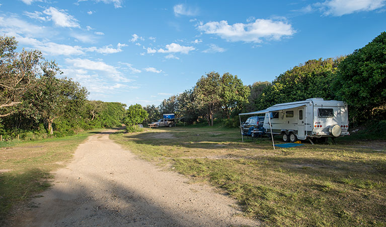 Racecourse Campground - Tourism Gold Coast