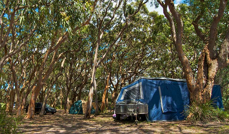 Stewart and Lloyds campground - Tourism Gold Coast