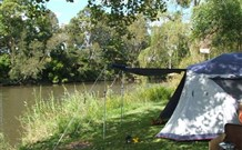 Williams River Holiday Park - Tourism Gold Coast