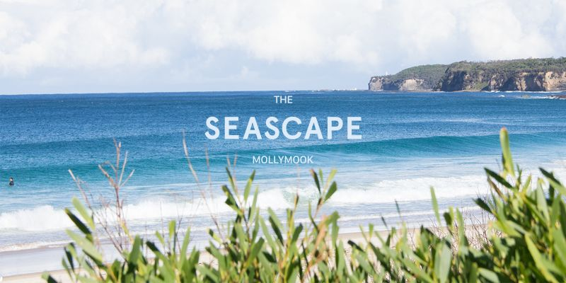 Mollymook Seascape Motel - Mollymook - Tourism Gold Coast