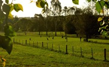 Stone Cottage Mittagong - Tourism Gold Coast