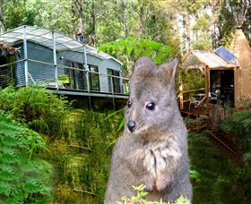 Huon Bush Retreats - Tourism Gold Coast