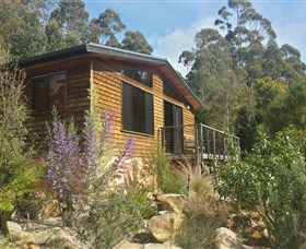 Southern Forest Accommodation - Tourism Gold Coast