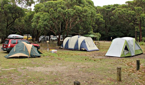 Pretty Beach Campground Murramarang National Park - Tourism Gold Coast