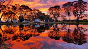 Coonawarra Bush Holiday Park - Tourism Gold Coast