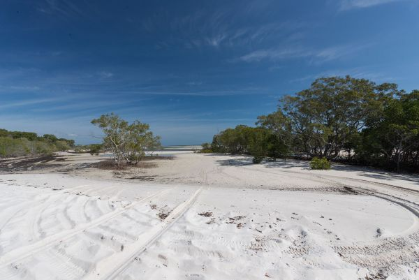 Fraser Island National Park Camping Ground - Tourism Gold Coast