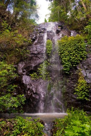 Nimbin Waterfall Retreat - Tourism Gold Coast