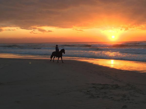Tassiriki Ranch Beach Horse Riding and Holiday Cabins