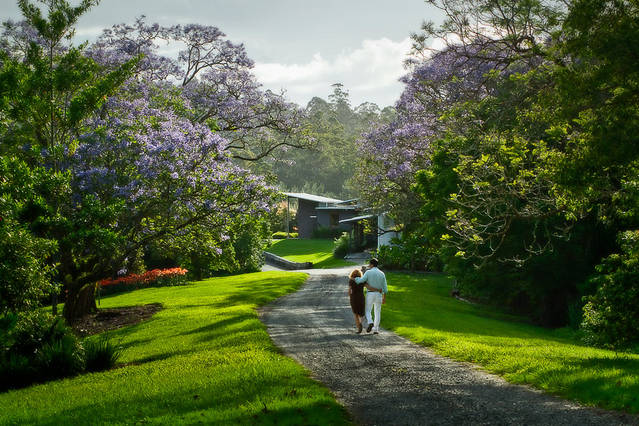 Lily Pily Country House - Tourism Gold Coast