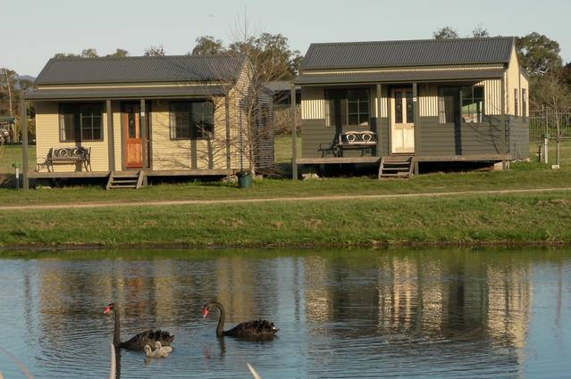 Mansfield Holiday Park - Tourism Gold Coast