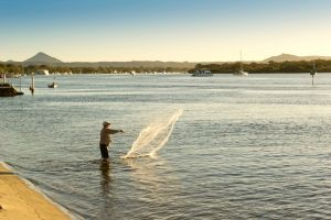 Noosa River Holiday Park - Tourism Gold Coast
