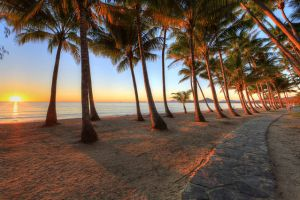 Palm Cove Holiday Park - Tourism Gold Coast