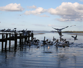 Pelicans At Denmark - Holiday Home - Tourism Gold Coast