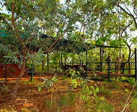 Arnhemland Barramundi Nature Lodge - Tourism Gold Coast