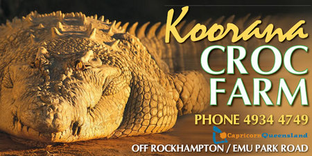Koorana Saltwater Crocodile Farm - Tourism Gold Coast