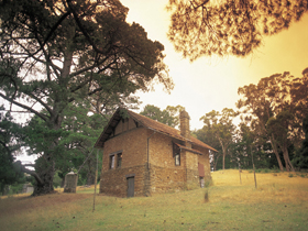Heysen - The Cedars - Tourism Gold Coast