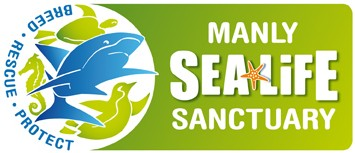 Manly SEA LIFE Sanctuary - Tourism Gold Coast