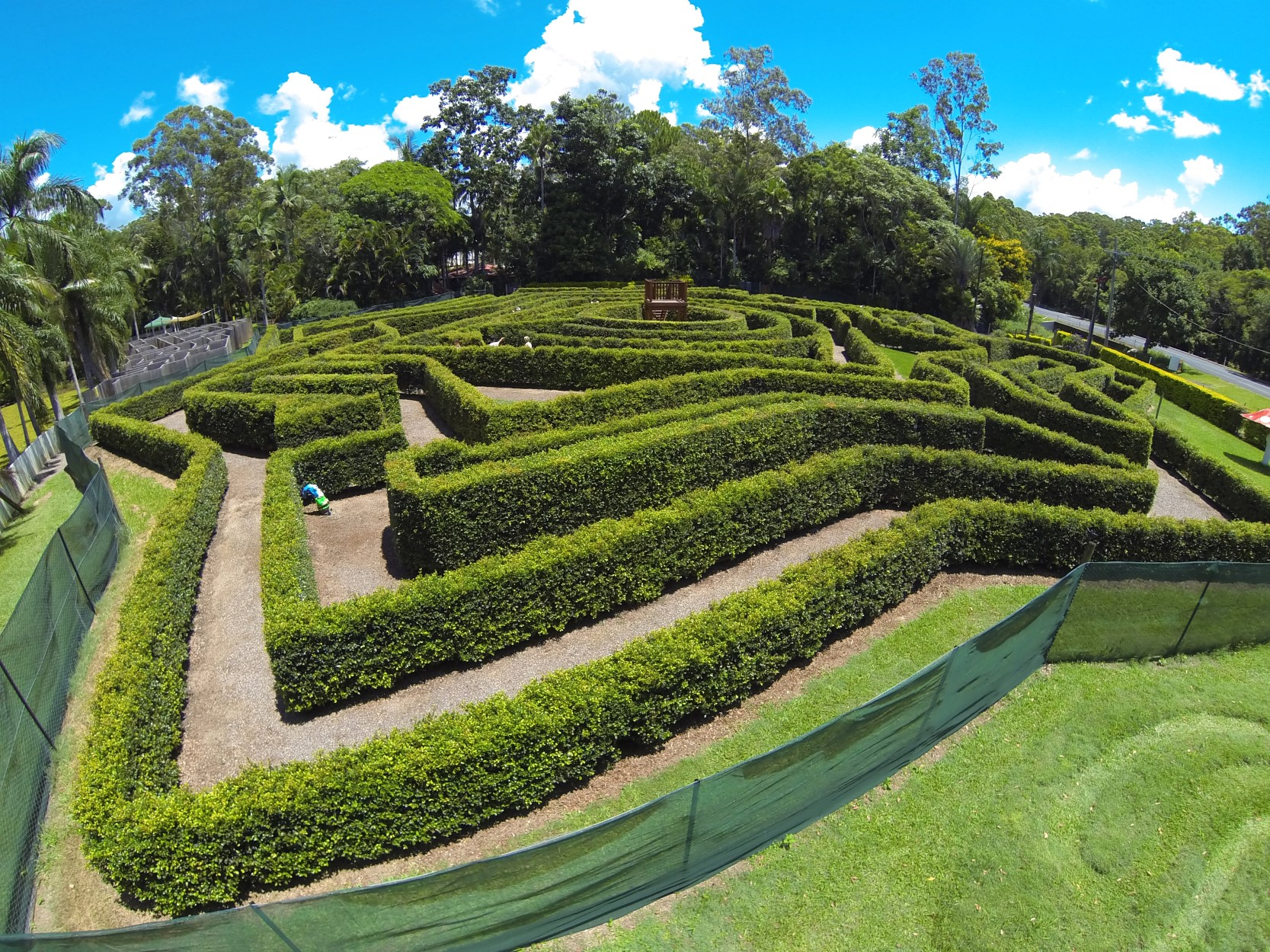 Bellingham Maze - Tourism Gold Coast