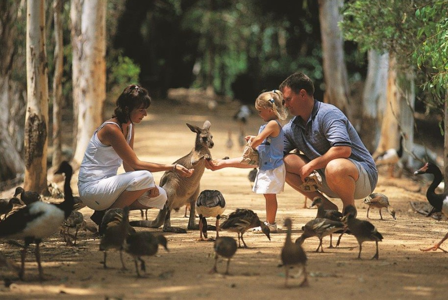 Billabong Sanctuary - Tourism Gold Coast