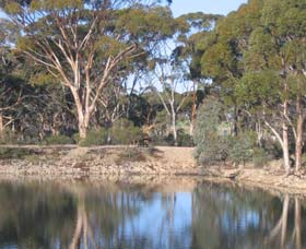 Merredin Railway Dam - Tourism Gold Coast