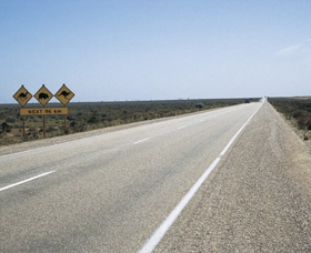 Eyre Highway - Tourism Gold Coast