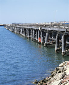 Old Timber Jetty - Tourism Gold Coast