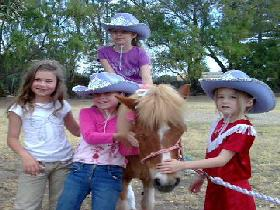 Amberainbow Pony Rides - Tourism Gold Coast