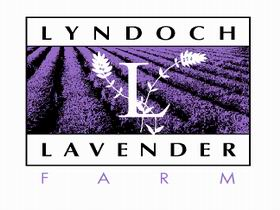 Lyndoch Lavender Farm and Cafe - Tourism Gold Coast