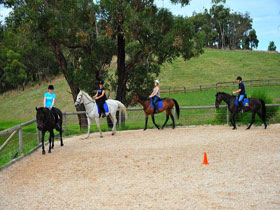 Megan Jones Riding School and Trail Rides - Tourism Gold Coast