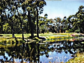 Smithton Country Club - Tourism Gold Coast