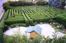 Westbury Maze and Tea Room - Tourism Gold Coast