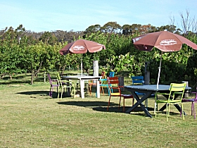 Cerise Brook Orchard  Family Golf - Tourism Gold Coast
