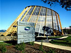 Forest EcoCentre - Tourism Gold Coast