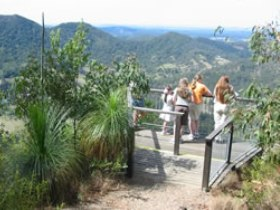 Mapleton Forest Reserve - Tourism Gold Coast