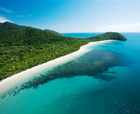 Cape Tribulation Daintree National Park - Tourism Gold Coast