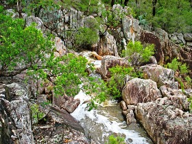 Crows Nest National Park - Tourism Gold Coast