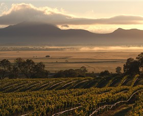 Montara Wines - Tourism Gold Coast