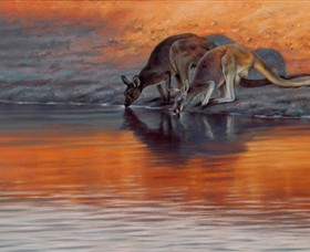 Steve Morvell Wildlife Art - Tourism Gold Coast