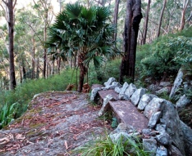 Wodi Wodi Walking Track - Tourism Gold Coast