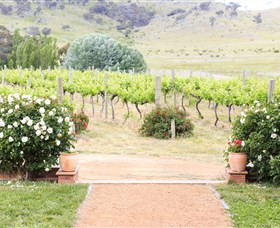Brindabella Hills Winery - Tourism Gold Coast