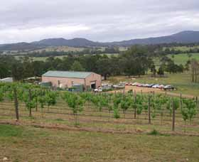 Villa d Esta Vineyard - Tourism Gold Coast